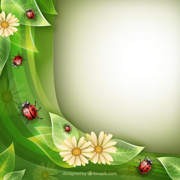 Sfondo della natura con coccinelle scaricare vettori gratis for Immagini sfondo natura