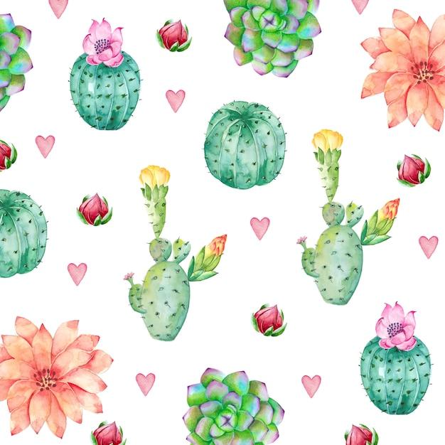 Sfondo di cactus in stile acquerello Vettore Premium