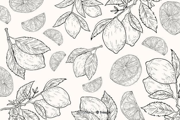 Sfondo di cibo naturale disegnato a mano Vettore gratuito