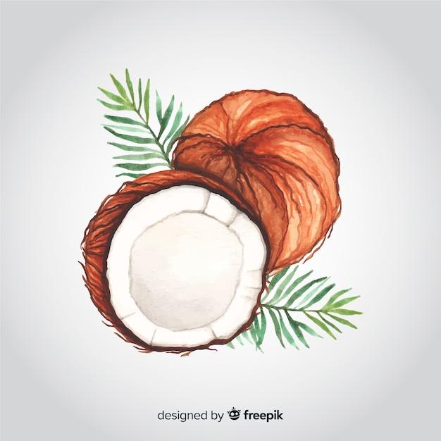 Sfondo di cocco acquerello disegnato a mano Vettore gratuito