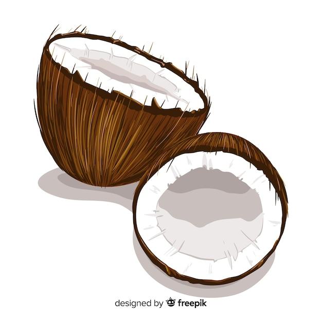 Sfondo di cocco realistico Vettore gratuito