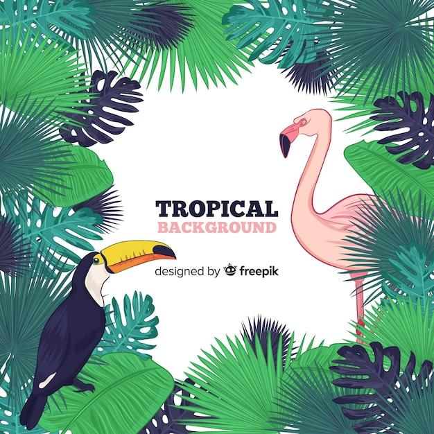 Sfondo di cornice foglie tropicali Vettore gratuito
