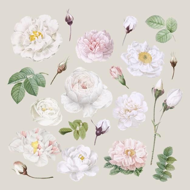 Sfondo di disegno floreale Vettore gratuito