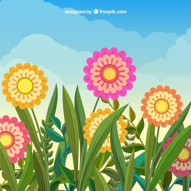 Sfondo Di Fiore Piatto Primavera Scaricare Vettori Gratis