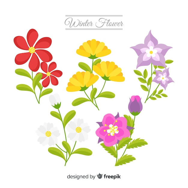 Sfondo di fiori d'inverno piatto Vettore gratuito