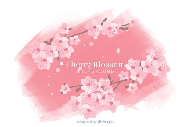 Sfondo di fiori di ciliegio disegnati a mano Vettore gratuito