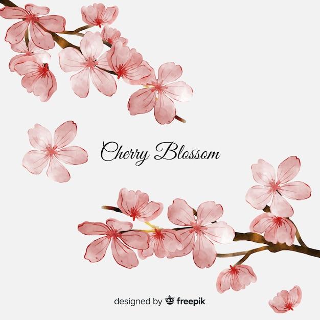 Sfondo di fiori di ciliegio Vettore gratuito