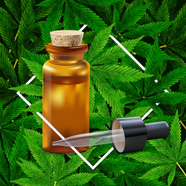 Sfondo di foglia di marijuana o cannabis. illustrazione realistica della pianta in vista dall'alto. Vettore Premium
