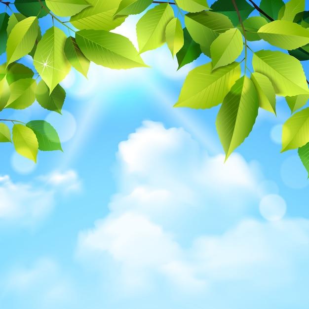 Sfondo di foglie e nuvole Vettore gratuito