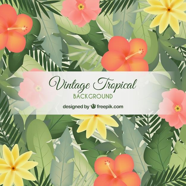 Sfondo di foglie tropicali vintage Vettore gratuito