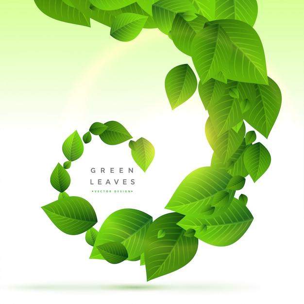 Sfondo di foglie verdi in stile ricciolo Vettore gratuito