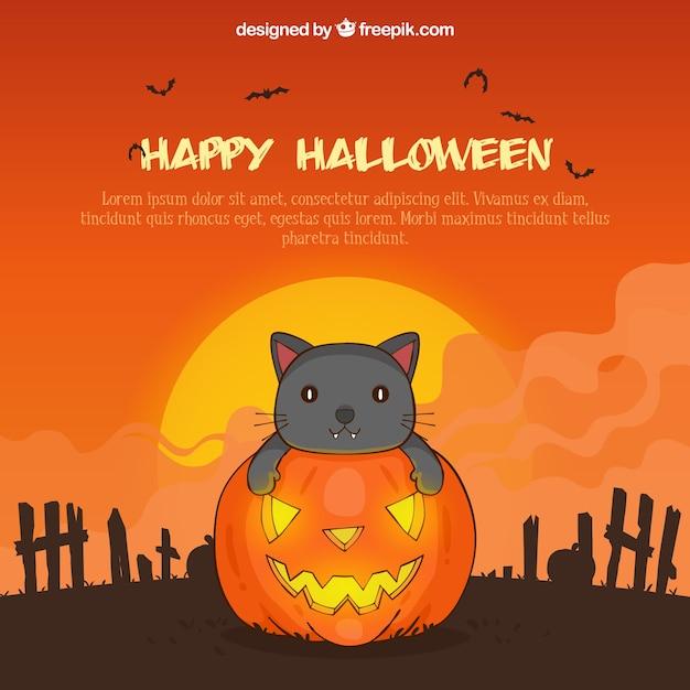 Zucca Halloween Gatto.Sfondo Di Halloween Con Gatto E Zucca Scaricare Vettori Gratis