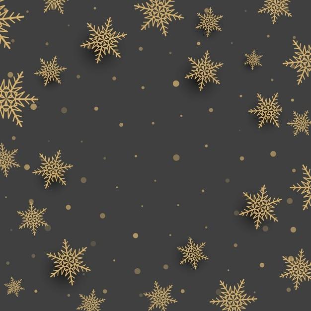 Ventiquattro Termini Solari Alberi Leggeri Neve Sfondo Neve