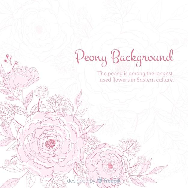 Sfondo di natura con fiori di peonia carini Vettore gratuito