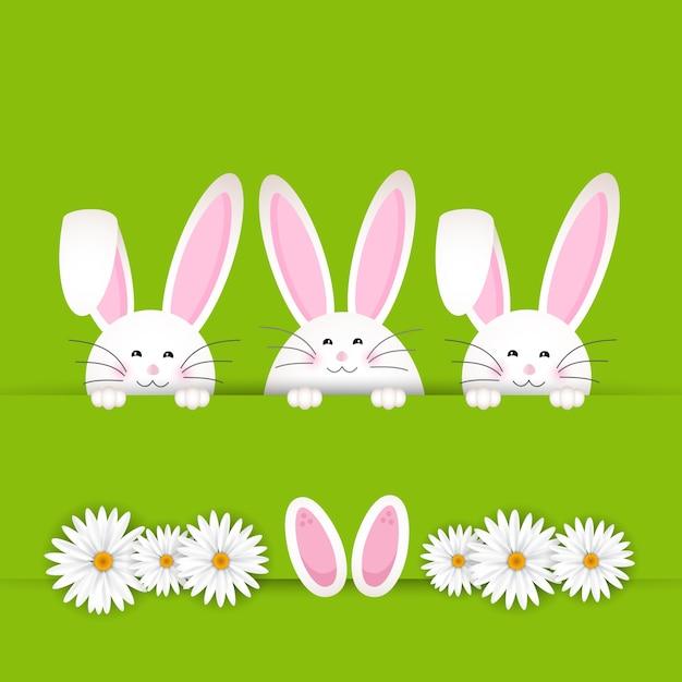 Sfondo di Pasqua coniglio con le margherite Vettore gratuito