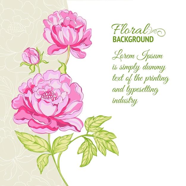 Sfondo di peonie rosa con testo di esempio Vettore gratuito