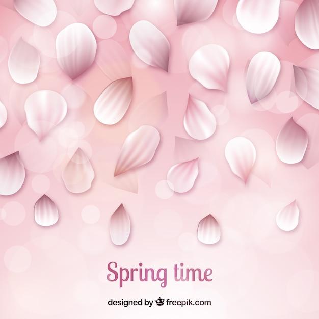 Sfondo di petali di fiori di ciliegio Vettore gratuito