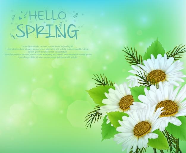 Sfondo di primavera con fiori margherita Vettore Premium