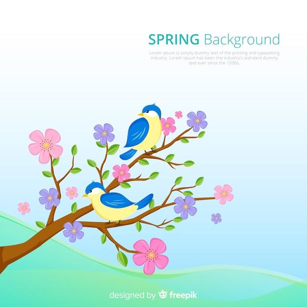 Sfondo di primavera uccelli disegnati a mano Vettore gratuito
