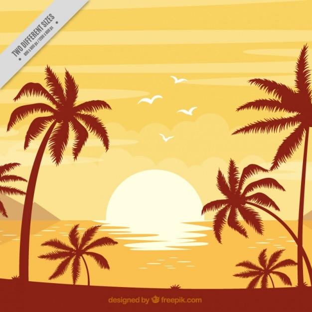 Sfondo di spiaggia con le palme al tramonto Vettore gratuito