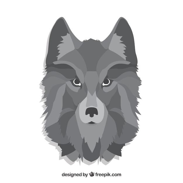 Sfondo di testa di lupo scaricare vettori gratis