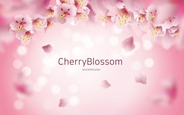 Sfondo fiore di ciliegio Vettore Premium