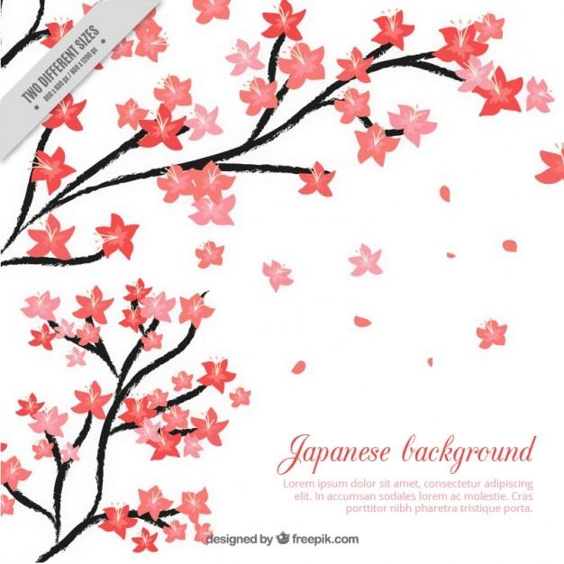 Sfondo giapponese con dipinti a mano fiori di ciliegio for Fiori di ciliegio dipinti