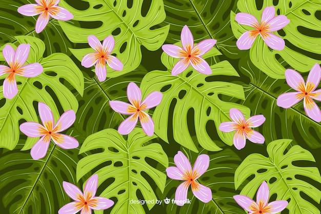 Sfondo naturale con fiori tropicali Vettore gratuito