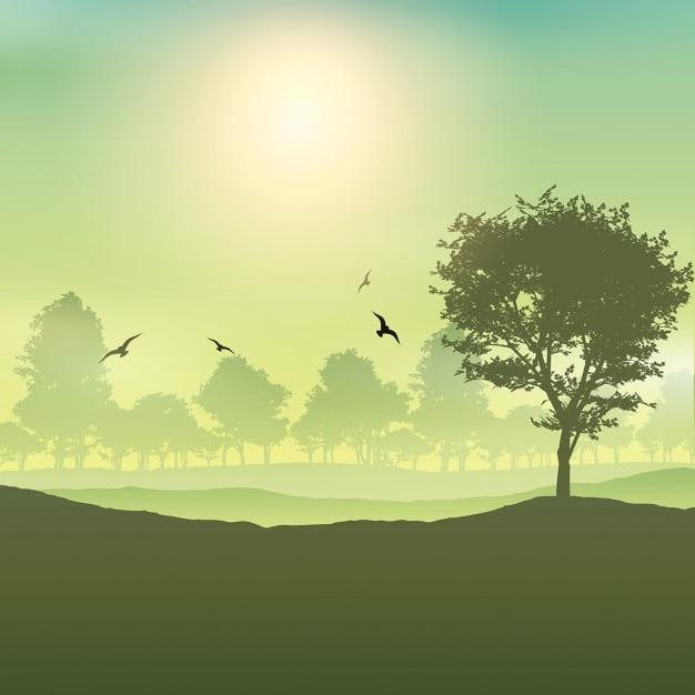 Sfondo paesaggio con alberi e uccelli Vettore gratuito