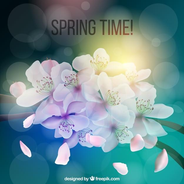Sfondo per tempo di primavera Vettore gratuito