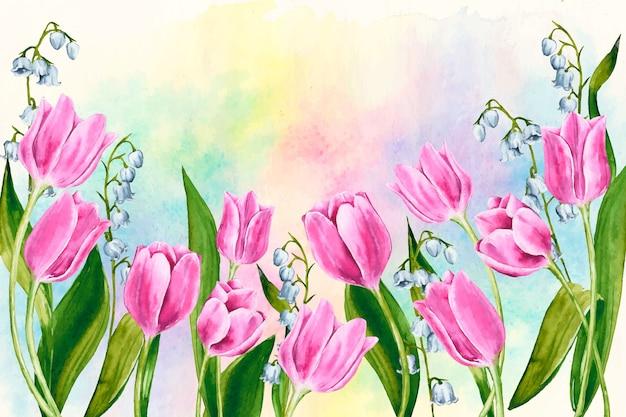 Sfondo primavera ad acquerello con tulipani colorati Vettore gratuito
