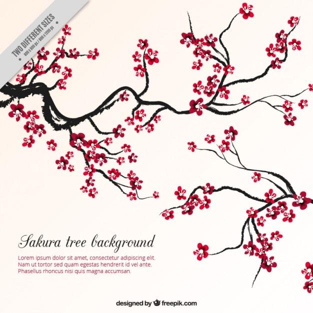 Sfondo sakura albero scaricare vettori premium for Sakura albero