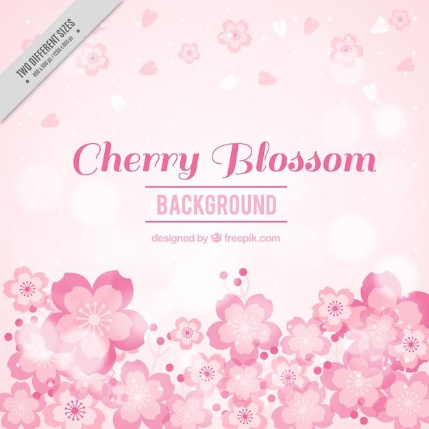 Sfondo sfocato fiori di ciliegio in toni rosa Vettore gratuito