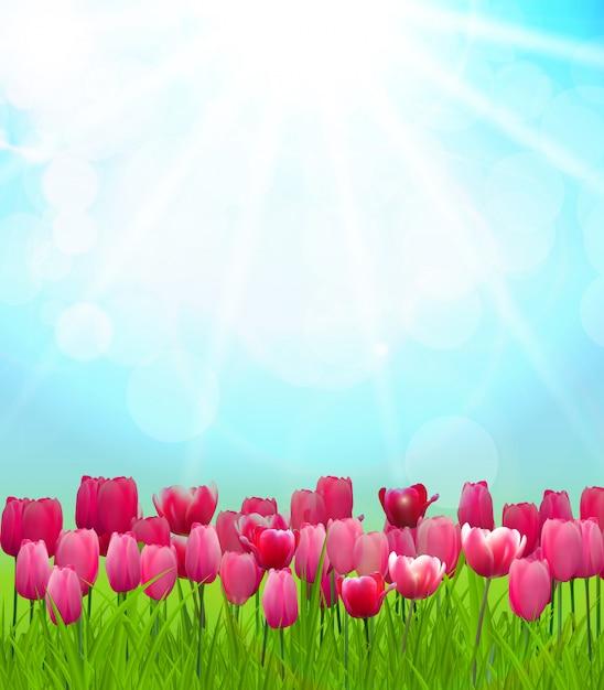 Sfondo soleggiato naturale Vettore Premium