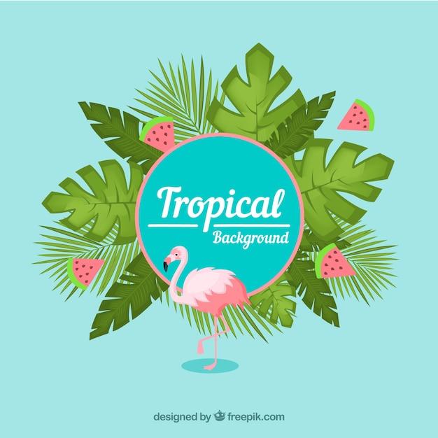 Sfondo tropicale colorato con design piatto Vettore gratuito