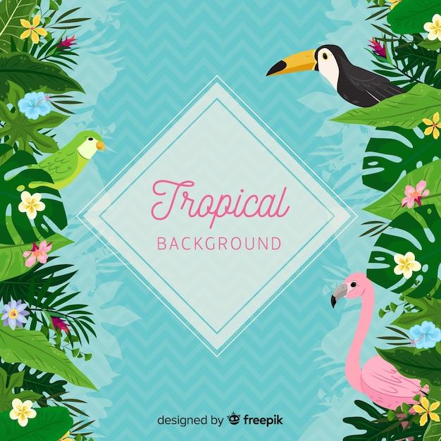 Sfondo tropicale con tucano e fenicottero Vettore gratuito