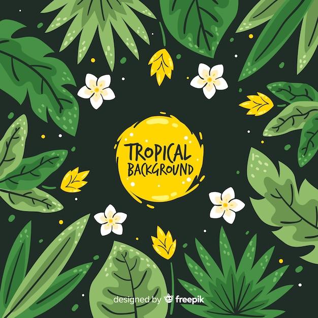 Sfondo tropicale disegnato a mano Vettore gratuito