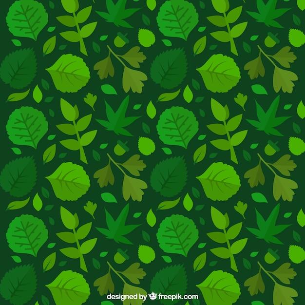 Sfondo Verde Con Foglie Scaricare Vettori Gratis