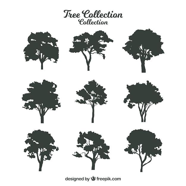 Silhouette di alberi con varietà di disegni Vettore gratuito