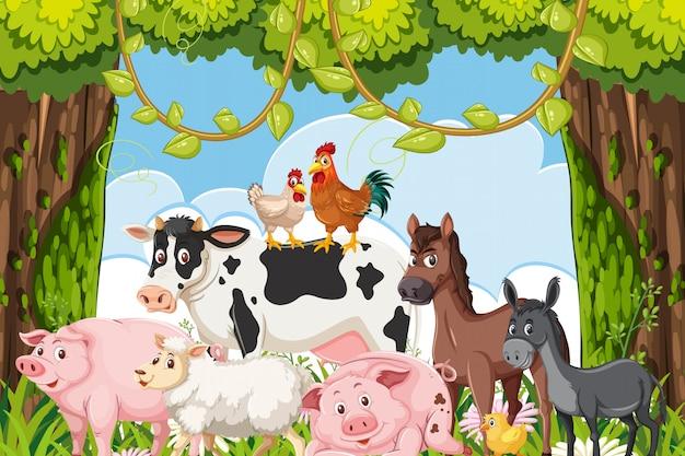Simpatici animali da fattoria nella scena della giungla Vettore Premium