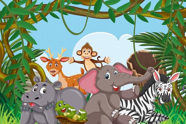 Simpatici animali nella giungla Vettore Premium