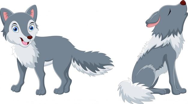 Simpatico cartone animato lupo e lupo che ulula Vettore Premium
