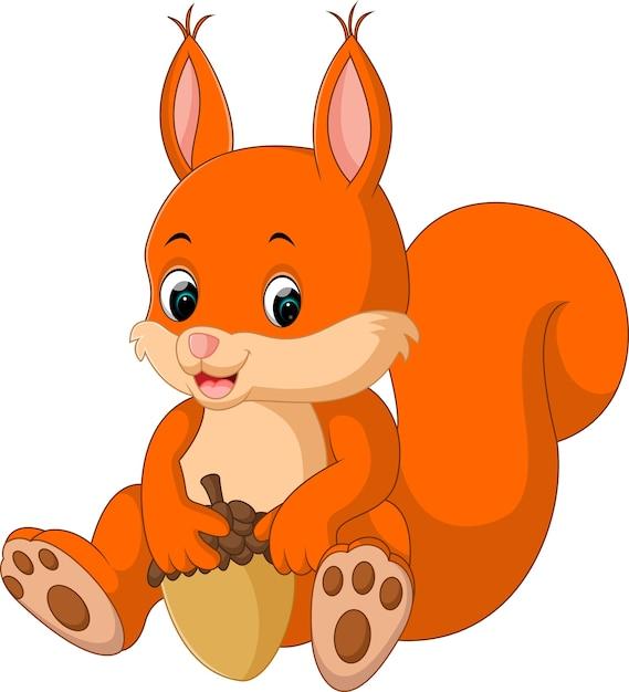 Simpatico cartone animato scoiattolo scaricare vettori premium