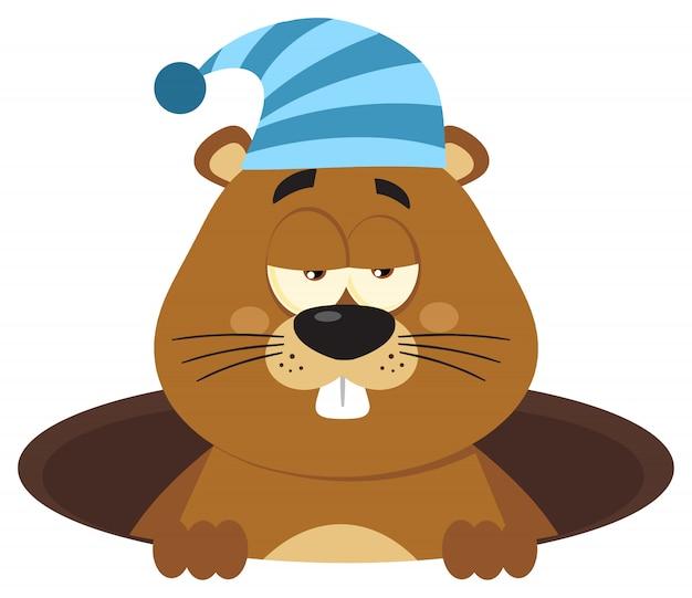 Simpatico personaggio dei cartoni animati di marmotta con cappello a