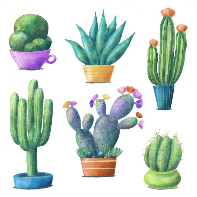 Simpatico set di cactus colorati, piante d'appartamento in vaso Vettore Premium