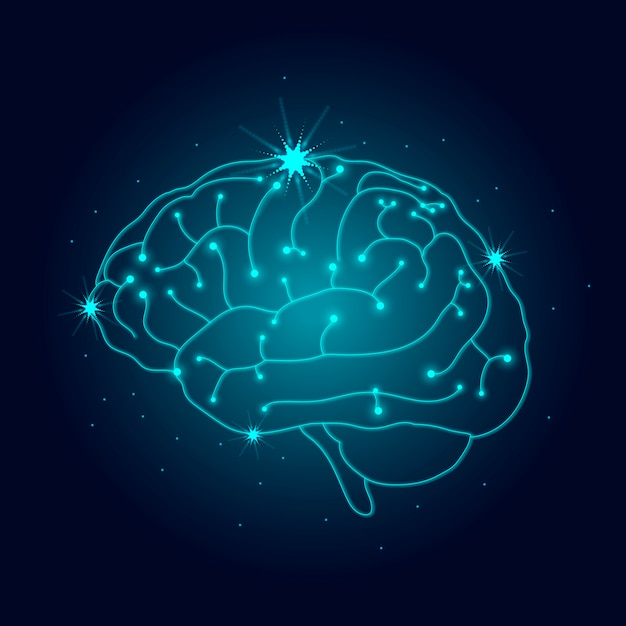 Sistema nervoso umano Vettore gratuito