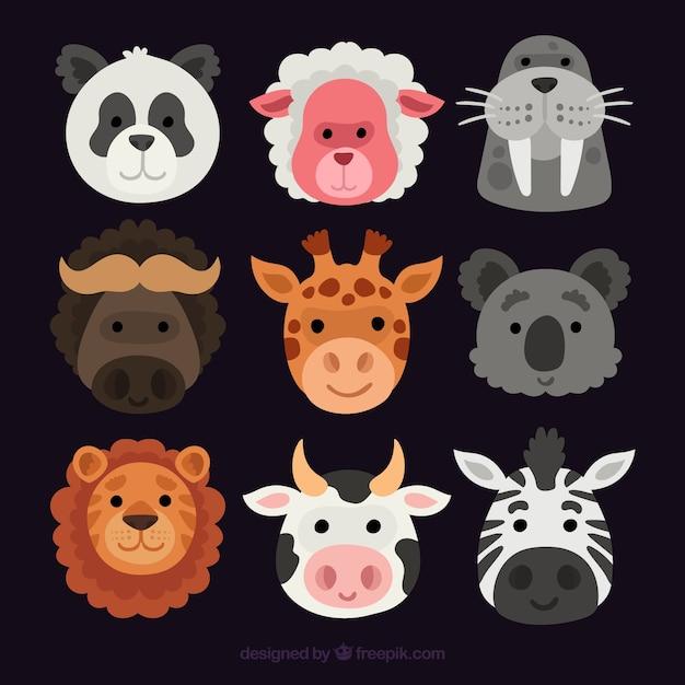 Smiley Faccia Degli Animali Con Disegno Piatto Scaricare Vettori