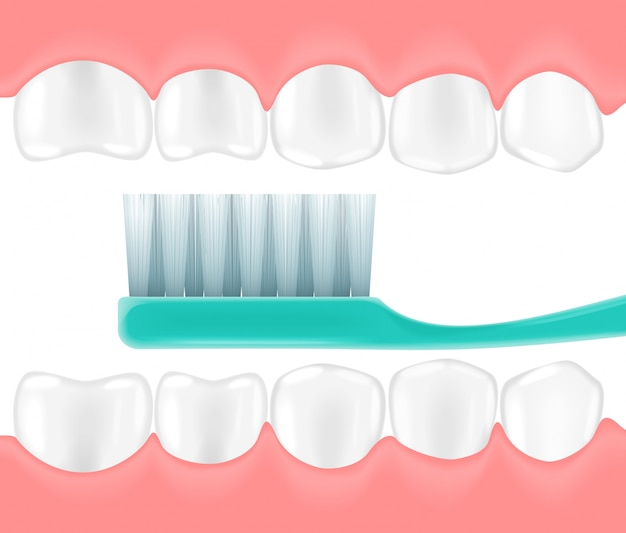 Spazzolino da denti realistico in bocca Vettore Premium