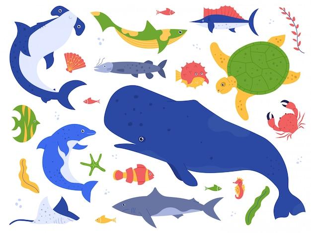Specie animali marini. animali dell'oceano nel loro habitat naturale. insieme sveglio dell'illustrazione della balena, del delfino, dello squalo e della tartaruga. world pack sottomarino. raccolta di alghe e alghe di piante acquatiche Vettore Premium