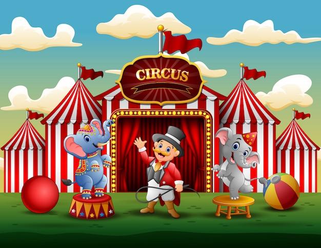 Spettacolo circense con allenatore e due elefanti Vettore Premium